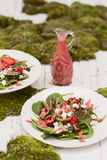 Strawberry Salad with Strawberry Dressing. A delicious strawberry salad with fresh strawberry dressing. Salad is topped with feta cheese, blueberries, and kiwi Royalty Free Stock Photos