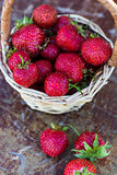 Strawberry is scattered. Out of the bucket on the table Royalty Free Stock Images