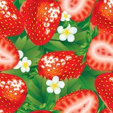 Strawberry seamless Stock Photo
