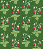 Strawberry. Seamless pattern. For background, wallpaper, textile Stock Photos