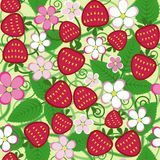 Strawberry seamless pattern Stock Image