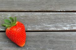 Strawberry season Royalty Free Stock Photography