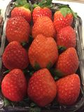 Strawberry. At Seoul in South Korea Stock Image