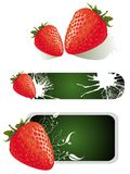 Strawberry set Royalty Free Stock Image