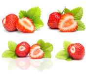 Strawberry set macro with leaves. On white Royalty Free Stock Photography