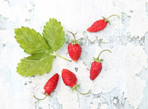 Strawberry on the shabby surface Stock Photography