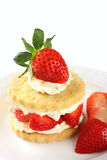 Strawberry Shortcake Royalty Free Stock Images