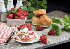 Strawberry Shortcake with Sprinkling Confectioners Sugar stock photography