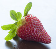 Strawberry. Single strawberry with bright green leaves Royalty Free Stock Image