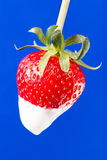 Strawberry single cream Stock Photos