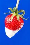 Strawberry single cream Stock Photos