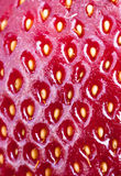 Strawberry skin. In making approach royalty free stock photos