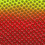 Strawberry skin Stock Images