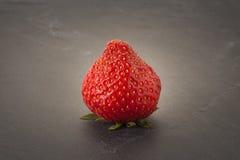 Strawberry on a slate. A single strawberry on a dark slate Royalty Free Stock Image