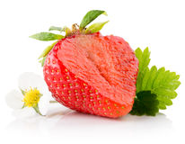 Strawberry slice isolated on the white background Stock Image