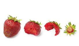 Strawberry and slices Stock Images