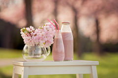 Strawberry smoothie freshly made in a jar, forest spring flowers stock photos