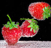Strawberry in soda water. Strawberry with bubbles in soda water on black background Stock Image