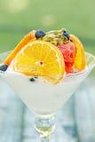 Strawberry Sorbet Martini Stock Photo