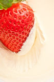 Strawberry in Sour Cream. Fresh strawberry in sour cream, close up Royalty Free Stock Images
