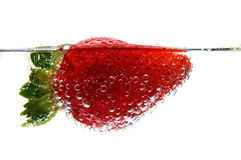 Strawberry in sparkling water. Isolated against a white background Royalty Free Stock Photos