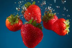 Strawberry splash. Strawberries dropped into water Royalty Free Stock Photos