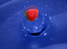 Strawberry Splash. Red strawberry in the water Stock Images