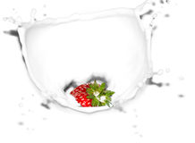 Strawberry in splash Stock Photo