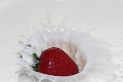 Strawberry splash Royalty Free Stock Images