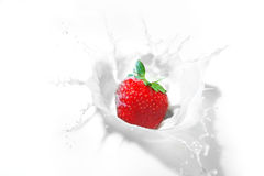 Strawberry splash in a bowl of milk Stock Images