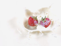 STRAWBERRY SPLASH IN MILK Stock Images