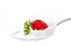Strawberry splash in milk Royalty Free Stock Images