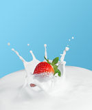 Strawberry splash in milk Stock Photography