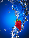 Strawberry Splash over Blue Stock Images