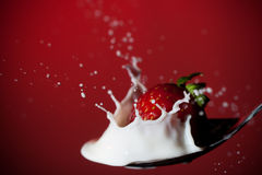 Strawberry splashing in milk Royalty Free Stock Photos