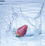 Strawberry splashing into water Stock Images