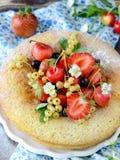 Strawberry sponge cake with fresh fruits Royalty Free Stock Photo