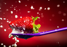 Strawberry on the spoon and milk splash Stock Image