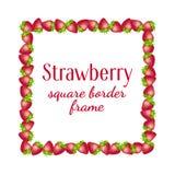 Strawberry square border frame. stock photos