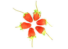 Strawberry with stalk Royalty Free Stock Image