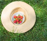 Strawberry in the straw hat Royalty Free Stock Image
