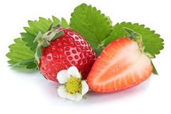 Strawberry strawberries fresh berry berries fruit fruits isolate Royalty Free Stock Images