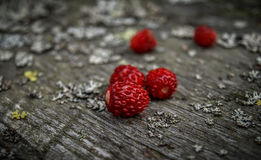 Strawberry. Strawberries on old, gray wooden bench Royalty Free Stock Image