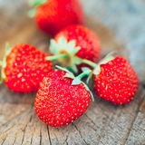 Strawberry. Strawberries. Organic Berries Stock Photos