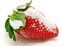 Strawberry in sugar Stock Images