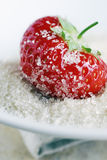 Strawberry in sugar Royalty Free Stock Photography