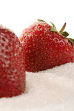 Strawberry in sugar. Strawberry isolated on white background detail view stock photo