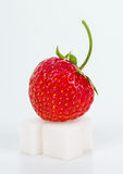Strawberry on sugar cube Royalty Free Stock Image
