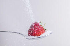 Strawberry with sugar royalty free stock photography