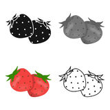 Strawberry, sweet and sour fruit.Fruit single icon in cartoon style vector symbol stock illustration web. Strawberry, sweet and sour fruit.Fruit single icon in Stock Photo